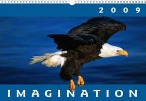 Imagination Wall Calendar
