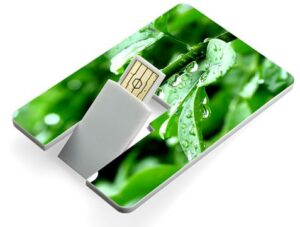 1GB Credit Card USB Flash Drive