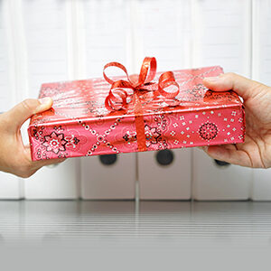 Christmas Gift Ideas - $25 to $35
