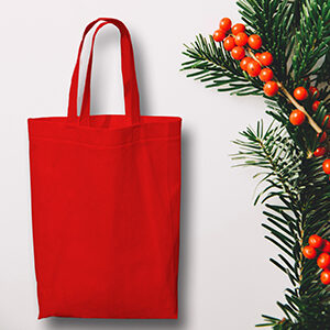 On the Fifth Day of Christmas JEM's Special Offer is: Non Woven Gift Bags!